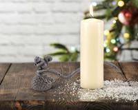 Vagabond House Candle Snuffer - Squirrel