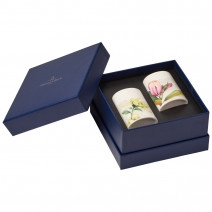 Villeroy and Boch Quinsai Garden Salt & Pepper Set